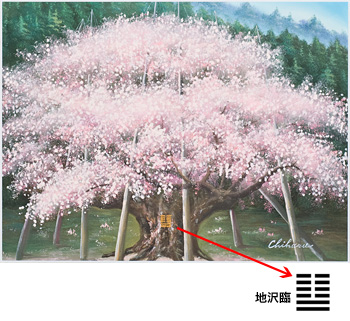 福寿満開『 淡墨桜(うすずみざくら)』